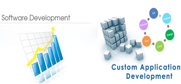 Software and custom application development