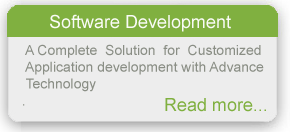 Customized application development